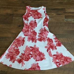 New York & Company scuba dress